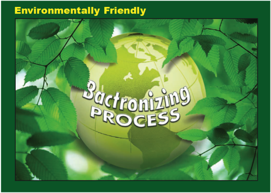 Bactronizing Process Franchise