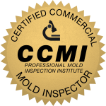 Certified Commercial Mold Services